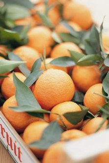 Oranges make tasty and nutritional snacks.