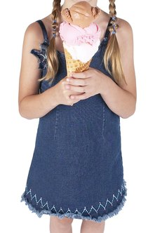 Make extra cash this summer as an ice cream vendor.