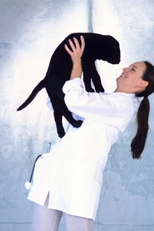 A veterinary behavioral specialist can change a pet's attitude and quality of life.