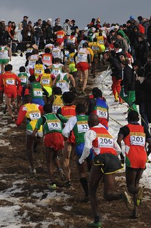 Runners negotiate a hill during the 2013 World Cross Country Championships.