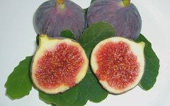 What Do Figs Do to the Body?