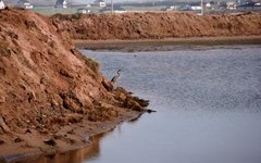 Methods of Stopping Soil Erosion on a Sloped Lot