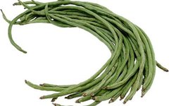The Difference Between Bush Beans & Vine Beans