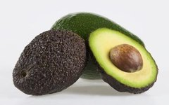What Climate Does an Avocado Tree Need to Grow?