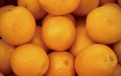 What Is a Seedless Citrus Fruit?
