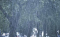 How to Protect a Portable Generator From Rain