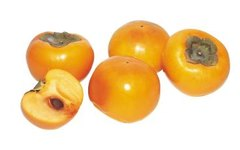 Do Persimmons Ripen off the Tree?