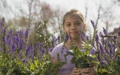 How & When to Prune a May Night Sage Plant