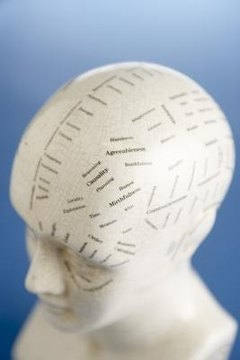 Psycholinguistics is a specialized field that combines the study of psychology and language.