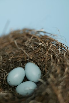 Moving your nest egg from one account to another requires paperwork.