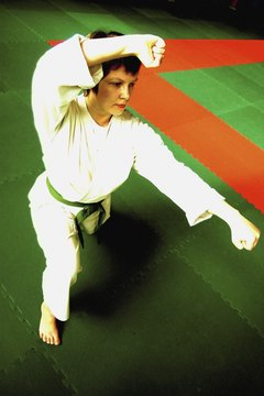 Judo encompasses throws, whereas boxing rules only allow punches.