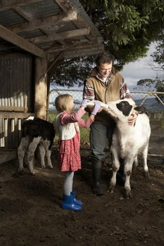 Family life on a small-acreage farm can be a rewarding experience.