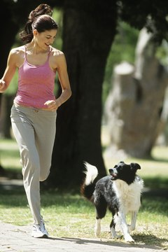 Boots can help to protect dog paws during runs.