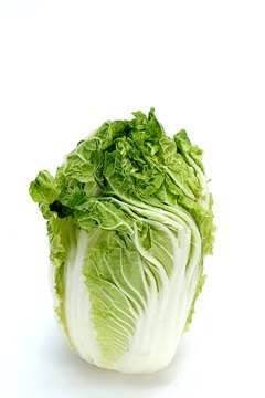 Napa cabbage is the best vegetable source of zinc.