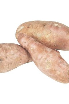 Sweet potatoes grow from tuberous roots.