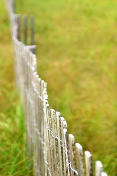 Your homeowners insurance might cover damage to your fence.