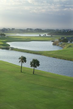 Palm-tree dotted golf courses in the South usually include Bermuda grass on fairways.