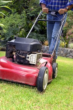 Mowing the lawns in your neighborhood could lead to a nice chunk of cash.