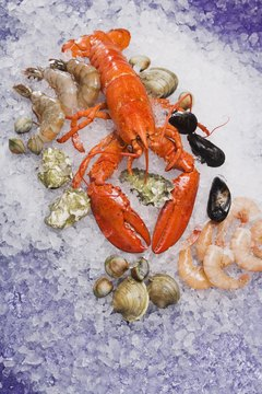 Shellfish are excellent sources of vitamin B-12.