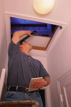 Inspectors look for mold and sources of moisture.