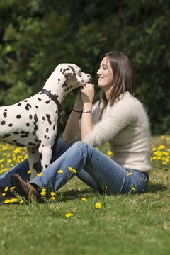 Good pets owners seek ways to bond with their dogs.