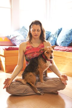 Your dog doesn't need yoga to find some inner peace.
