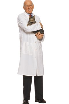 Older cats can recover from bacterial infections with some vet care and TLC.