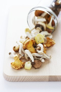 Different types of mushrooms provide different amounts of fiber.