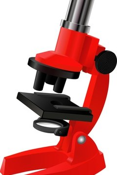 Microscope to Look at cells.