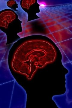 The brain receives messages from your sensory organs.