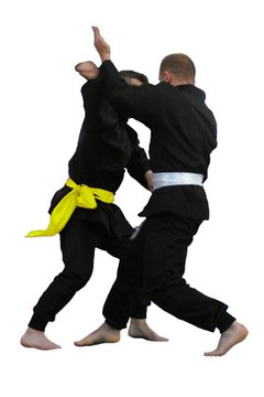 Martail arts are the foundations of Special Forces hand-to-hand combat training.