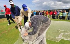 How to Use Golf Nets for Beginners