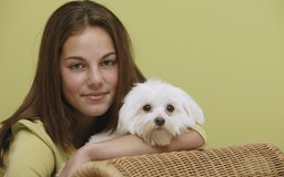 Watch How to Remove Dog Saliva Stains video
