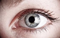 Diet for Glaucoma Prevention