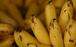 Nutritional Benefits of Bananas