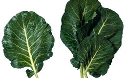 What Are the Benefits of Collard Greens?