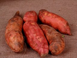 The Nutritional Composition of a Sweet Potato