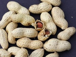 The Advantages of Nuts for the Human Body