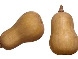 Is Butternut Squash a Complex Carbohydrate?