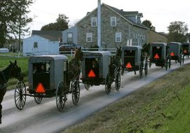 An Amish funeral procession of horse-pulled buggies in Pennsylvania.
