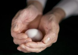 A Roth IRA could be your retirement nest egg.