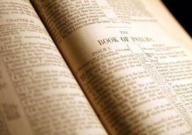 Anglicans revere the Bible as God's holy word to humankind.