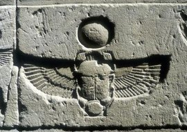 Ancient Egyptians saw scarab beetles as symbols of rebirth.