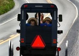Many Amish drive wagons because they oppose car ownership.