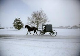 The Amish are a religious people who shun worldly ties in their lives.