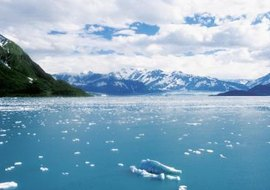 Colder oceans are able to absorb more carbon dioxide than warmer ones.
