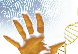 DNA fingerprints are as individual as the prints from your fingers.