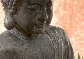Buddha moved among Hindus and spoke their language.