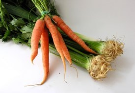 Benefits of Carrot and Celery Juice