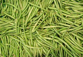Canned Green Bean Nutrition